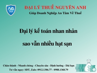 dai-ly-ke-toan-nhan-nhan-sao-van-nhieu-hat-san